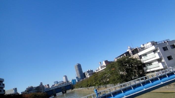 f:id:shioshiohida:20101103110829j:image