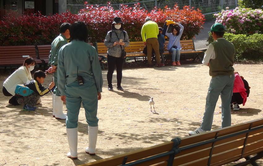 f:id:shioshiohida:20120101020540j:plain
