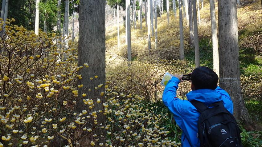 f:id:shioshiohida:20120101054121j:plain