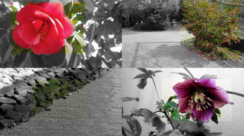 f:id:shioshiohida:20120310201452j:image
