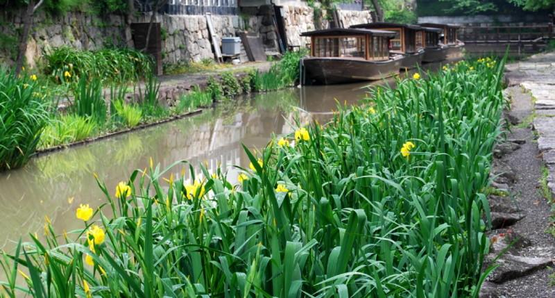 f:id:shioshiohida:20120508105838j:image