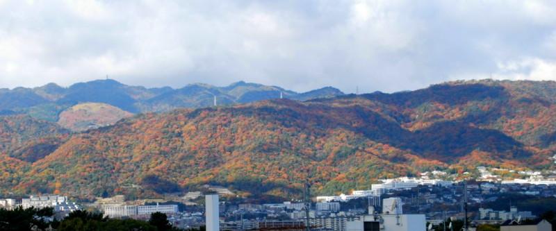 f:id:shioshiohida:20121127114647j:image