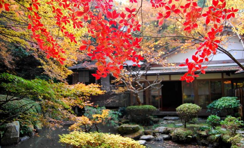 f:id:shioshiohida:20121130104941j:image