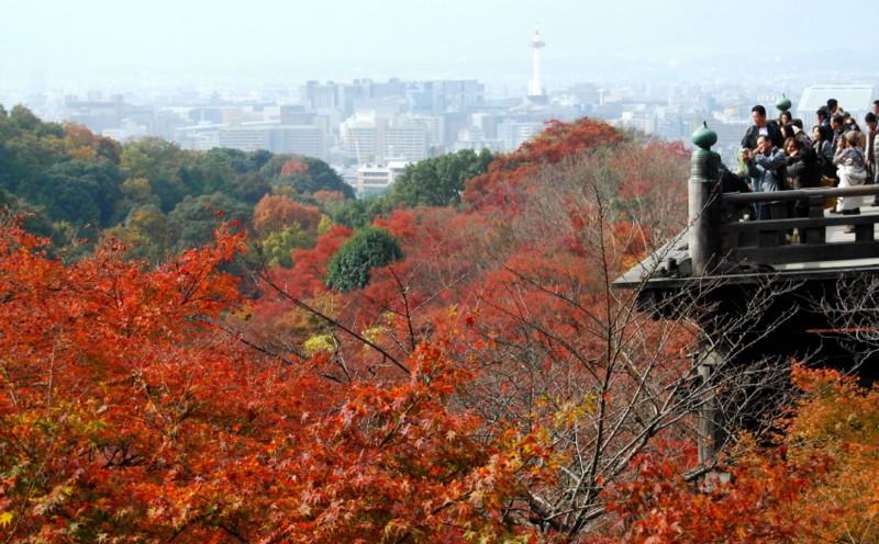 f:id:shioshiohida:20121130114132j:image