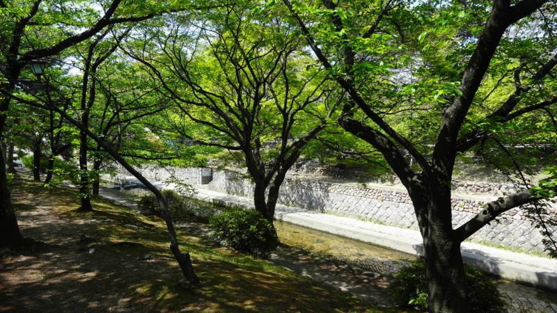 f:id:shioshiohida:20130429100154j:image