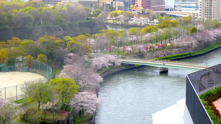 f:id:shioshiohida:20140206152526j:plain