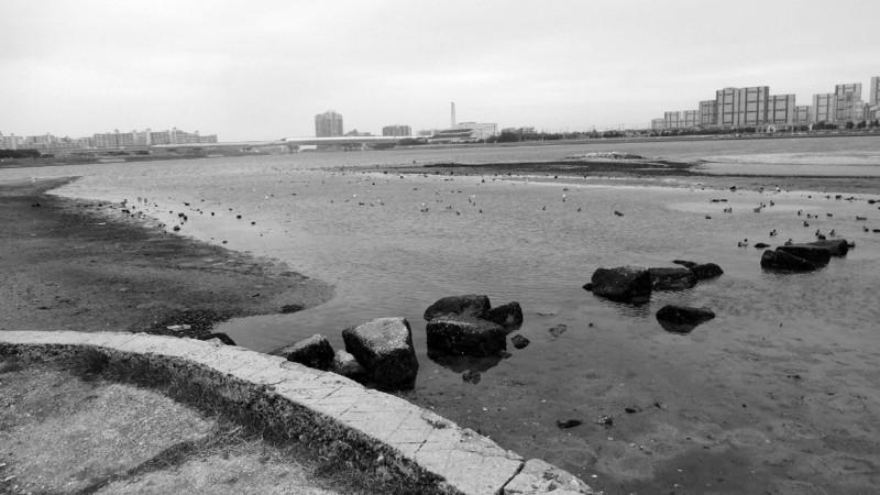 f:id:shioshiohida:20140318111323j:image