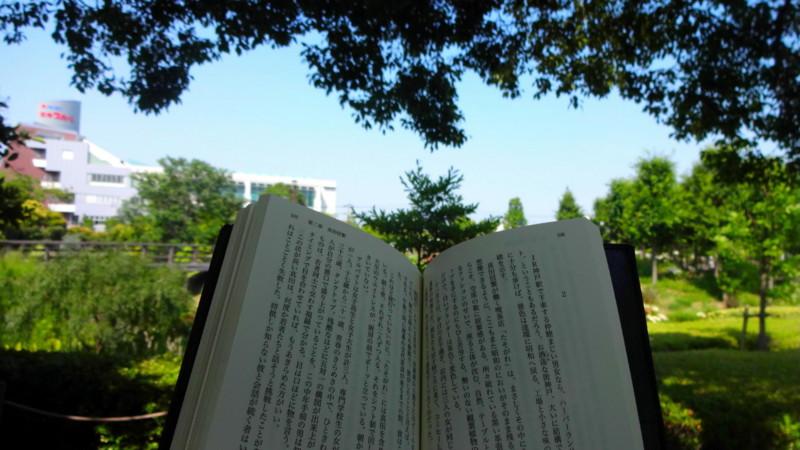 f:id:shioshiohida:20140619150050j:image