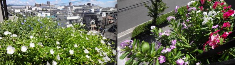 f:id:shioshiohida:20140915023249j:image