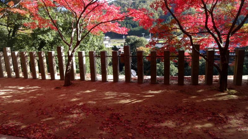 f:id:shioshiohida:20141113132621j:image