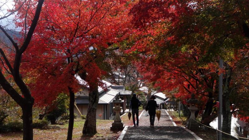 f:id:shioshiohida:20141115120322j:image