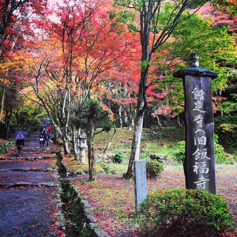 f:id:shioshiohida:20141116001105j:image