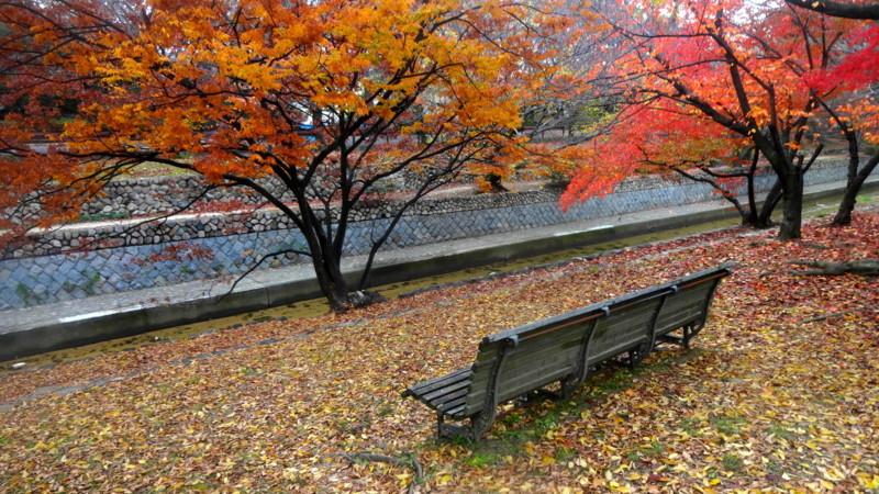 f:id:shioshiohida:20141126105522j:plain