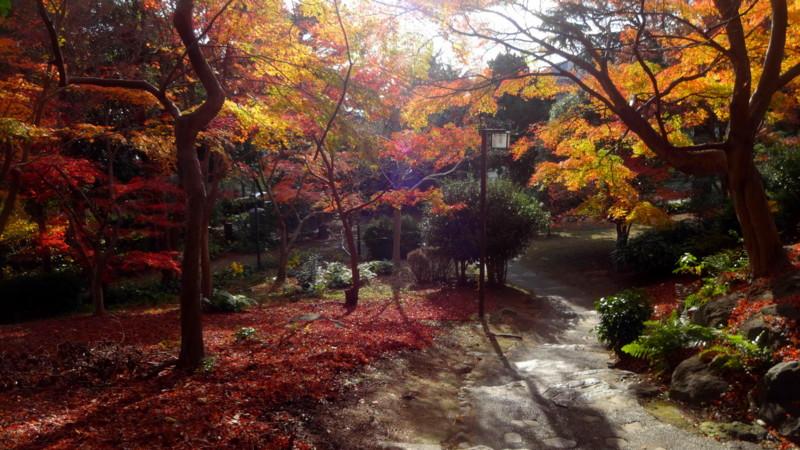 f:id:shioshiohida:20141202144008j:image