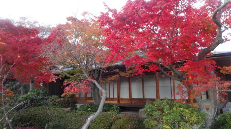 f:id:shioshiohida:20141202153658j:image