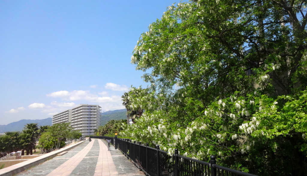f:id:shioshiohida:20150430111103j:plain