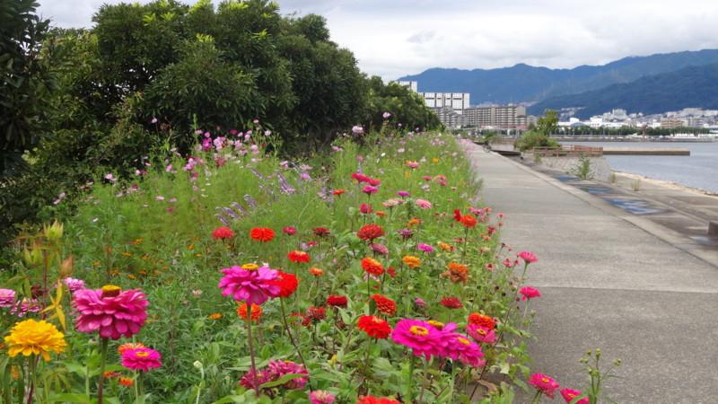 f:id:shioshiohida:20150925102415j:image