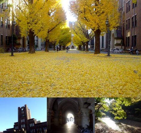 f:id:shioshiohida:20151215042730j:image