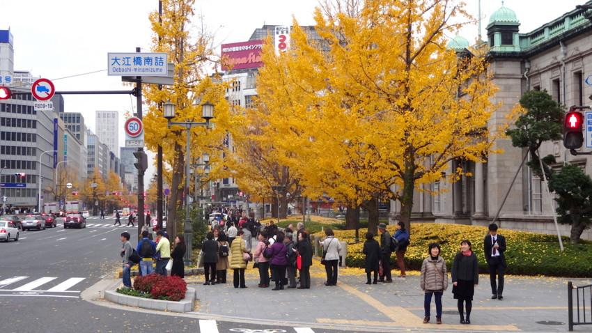 f:id:shioshiohida:20151216145235j:image