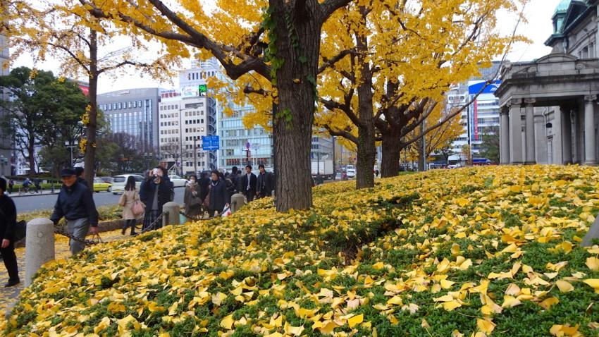 f:id:shioshiohida:20151216145417j:image