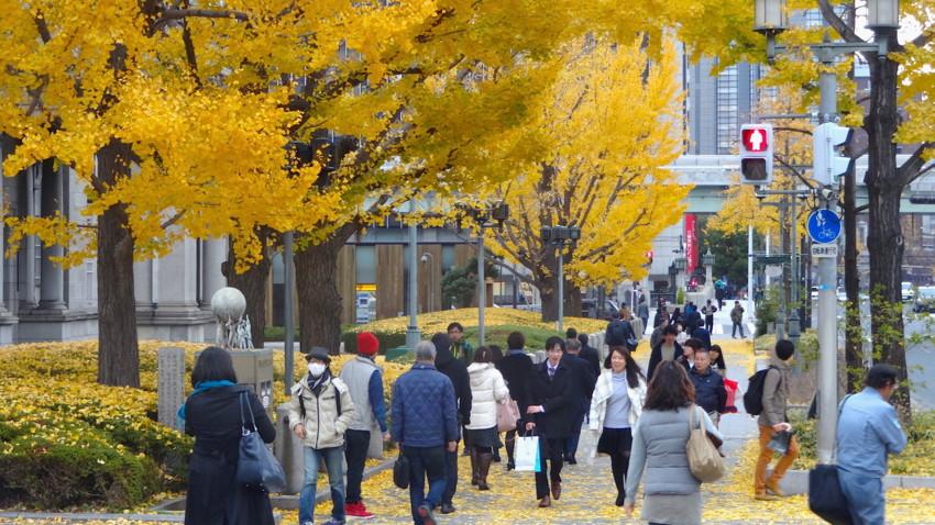f:id:shioshiohida:20151216145737j:image