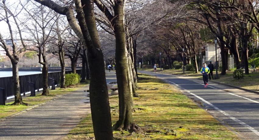 f:id:shioshiohida:20160214093746j:plain