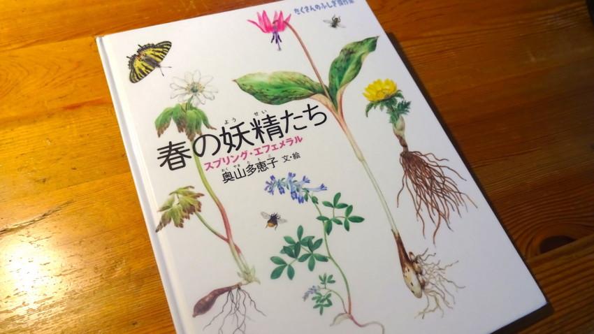 f:id:shioshiohida:20160329095248j:plain