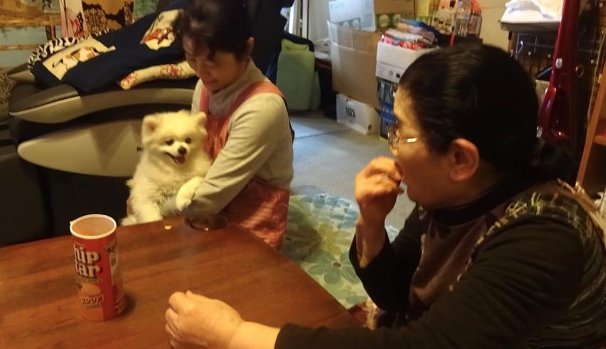 f:id:shioshiohida:20160402140828j:plain
