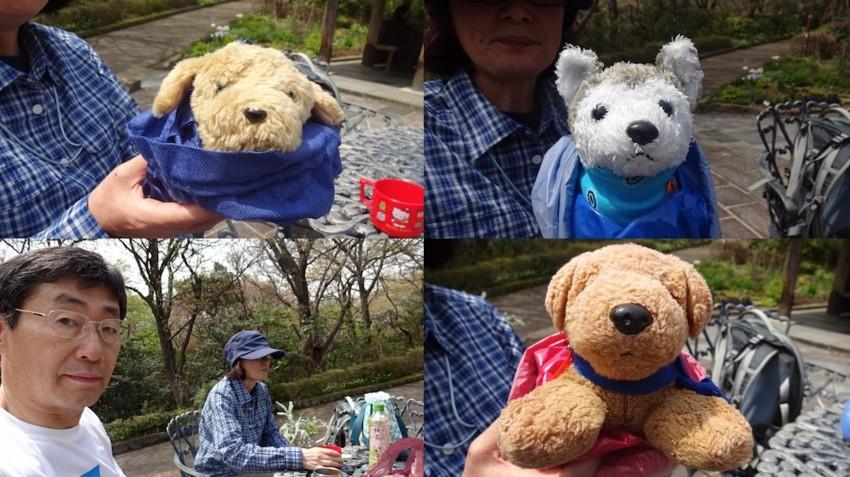 f:id:shioshiohida:20160410115443j:plain