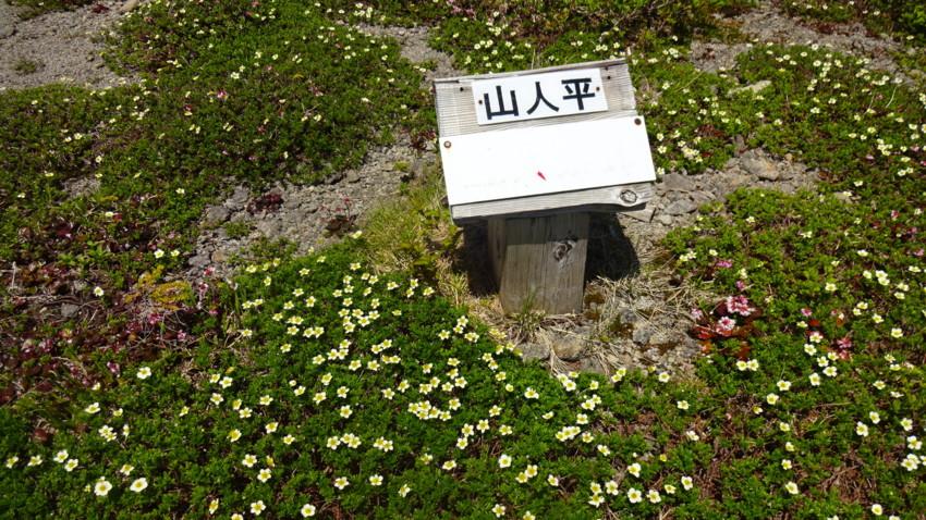 f:id:shioshiohida:20160611115836j:plain