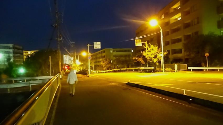 f:id:shioshiohida:20161014052433j:plain