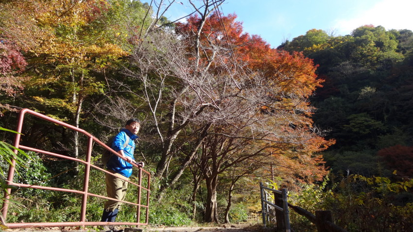 f:id:shioshiohida:20161116134534j:plain