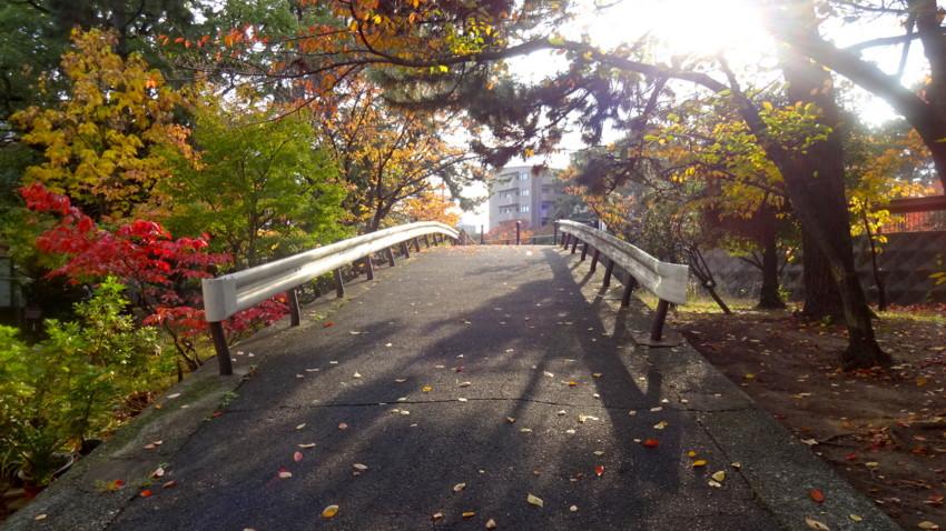 f:id:shioshiohida:20161117145404j:plain
