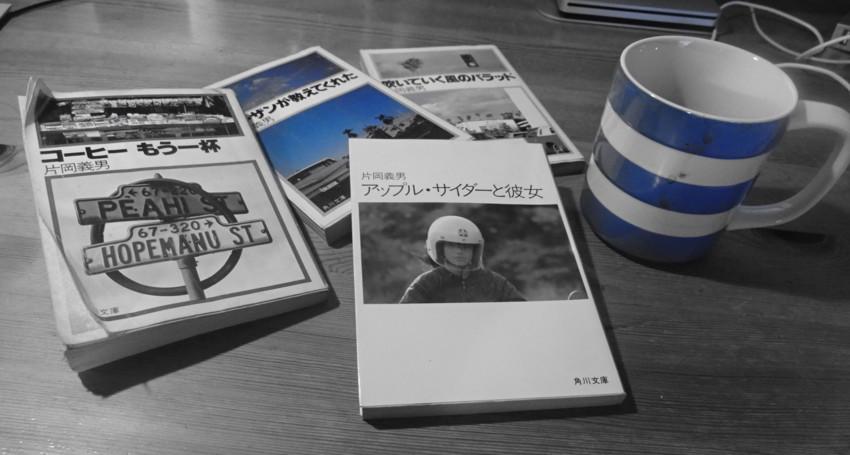 f:id:shioshiohida:20161205101247j:plain