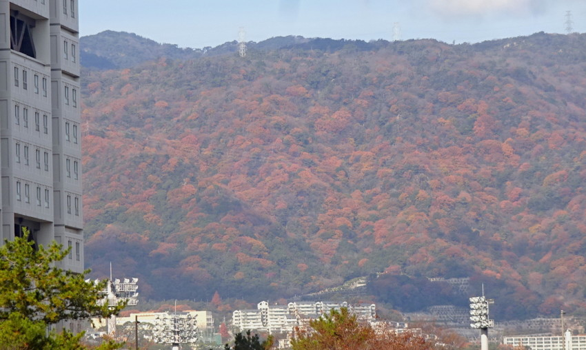f:id:shioshiohida:20161208112359j:plain