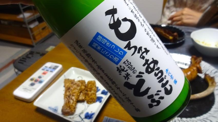f:id:shioshiohida:20161225191537j:plain