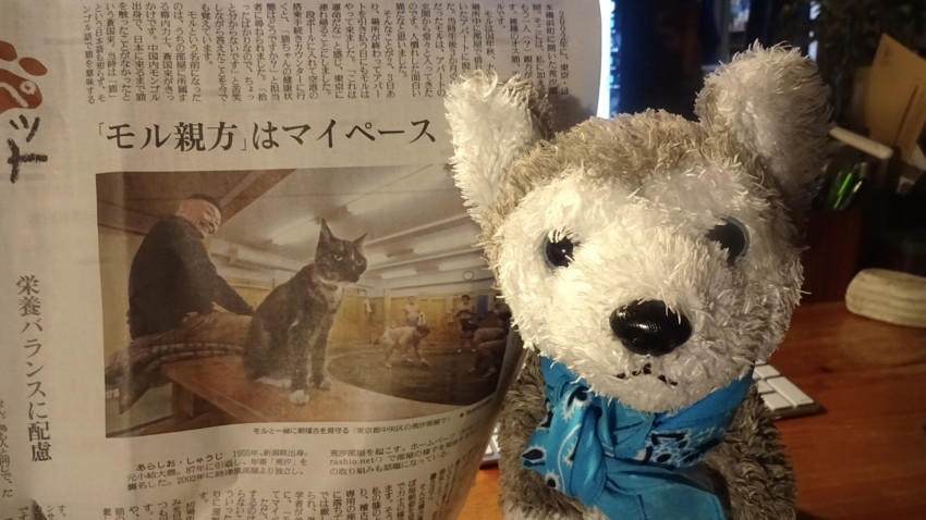 f:id:shioshiohida:20170117230757j:plain