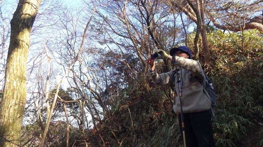 f:id:shioshiohida:20170312152829j:plain