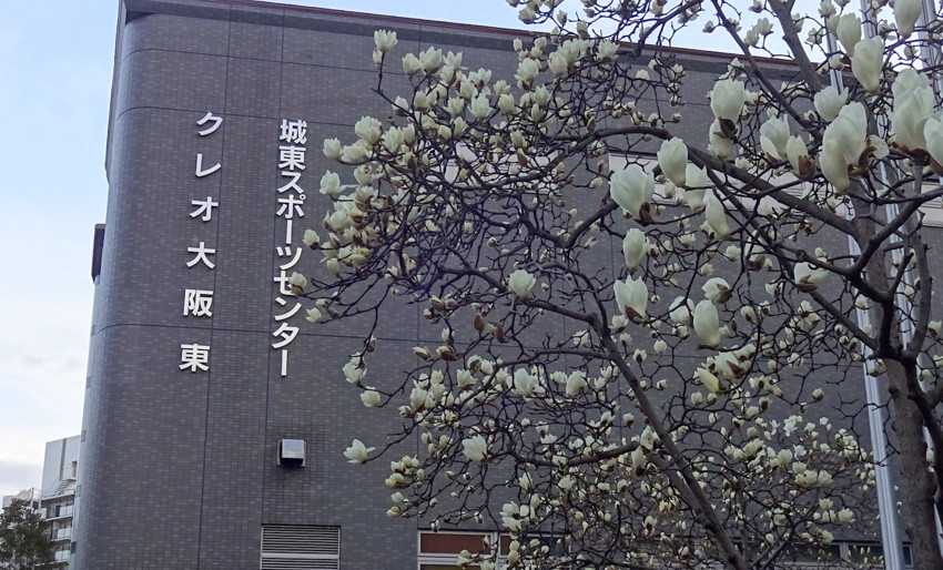 f:id:shioshiohida:20170316174831j:plain