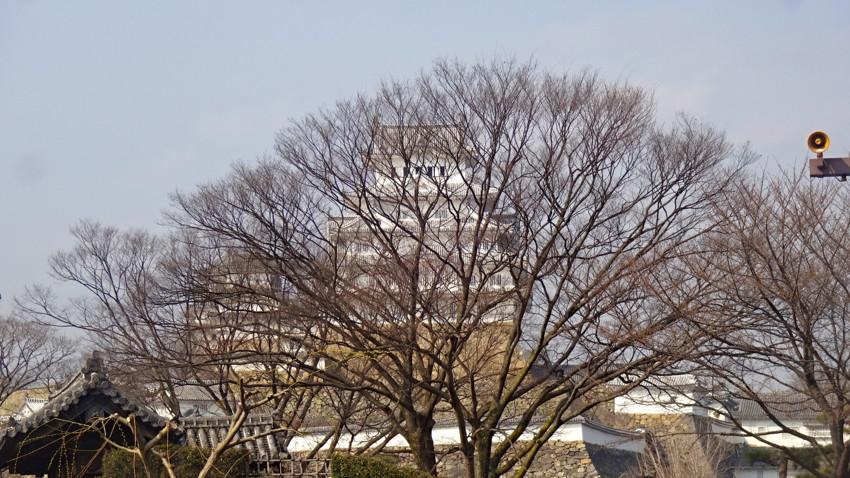 f:id:shioshiohida:20170329145922j:plain