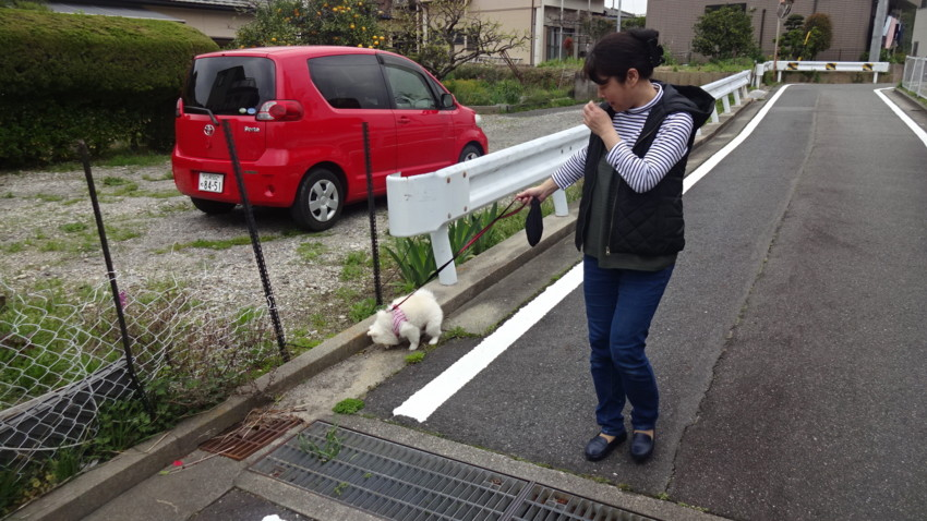 f:id:shioshiohida:20170410152953j:plain