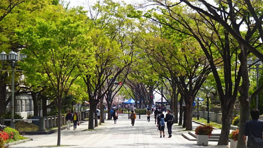 f:id:shioshiohida:20170416095839j:plain