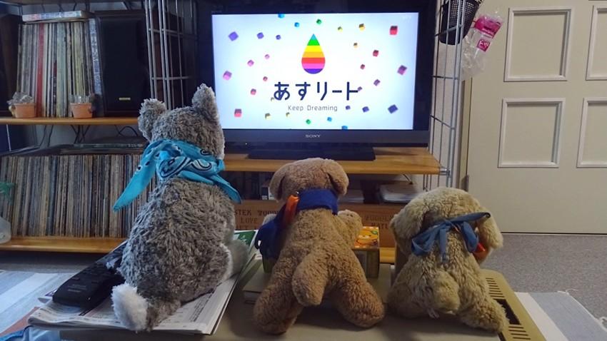 f:id:shioshiohida:20170527113458j:plain