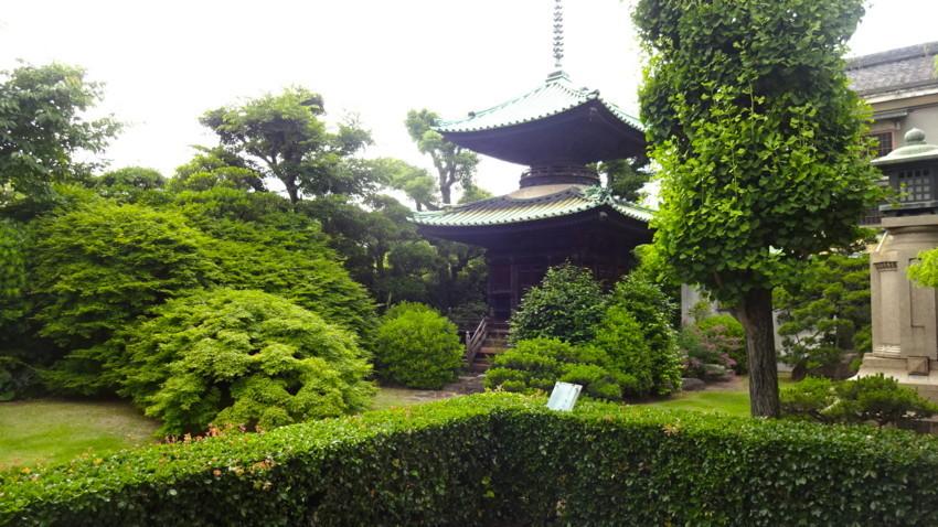 f:id:shioshiohida:20170606150325j:plain