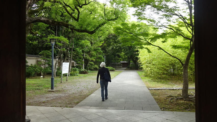 f:id:shioshiohida:20170606150942j:plain