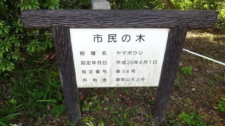 f:id:shioshiohida:20170623163209j:plain