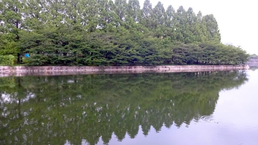 f:id:shioshiohida:20170705184620j:plain