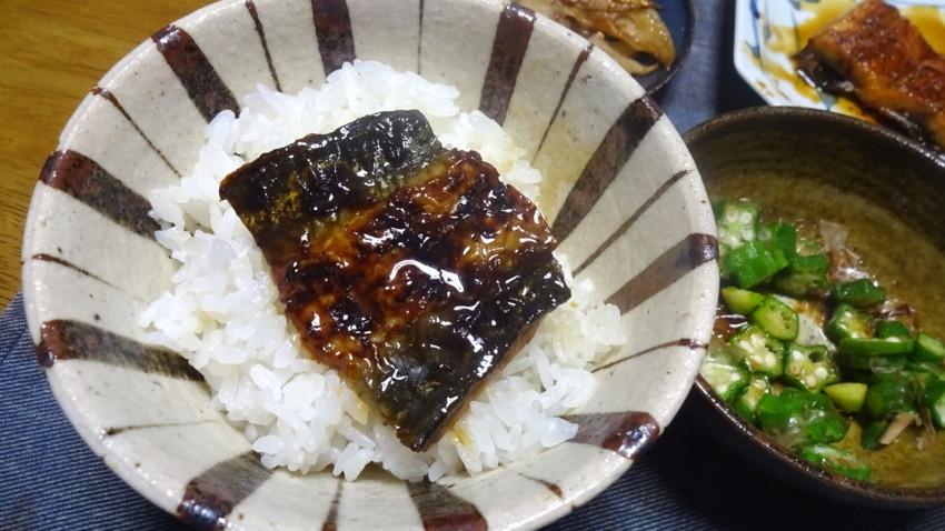 f:id:shioshiohida:20170806103032j:plain