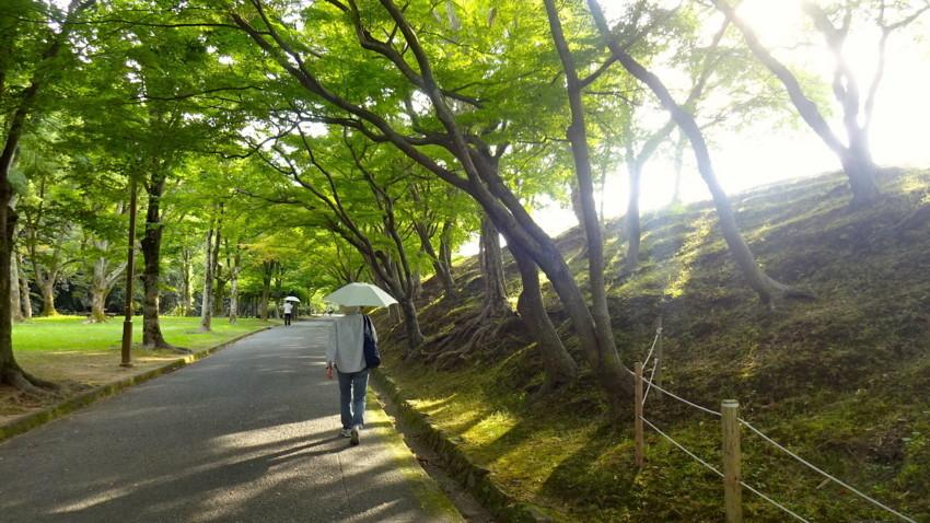 f:id:shioshiohida:20170823163501j:plain