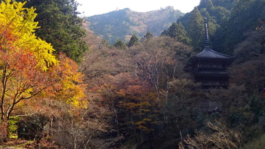 f:id:shioshiohida:20171117122330j:plain